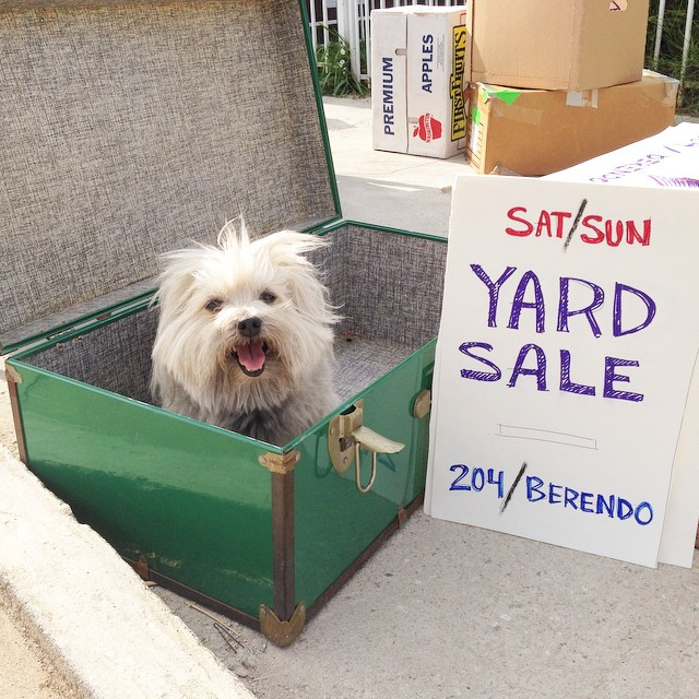 Yard sale. Dog not included.
