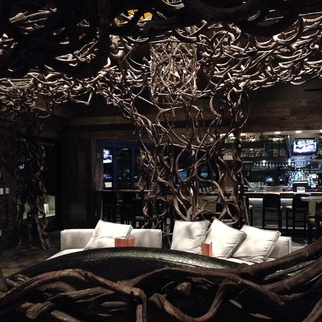 Next place to try out... Tanzy! Looks so awesome! #groot #branches 🌳