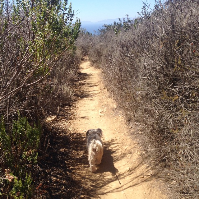 She's about that #hike life!