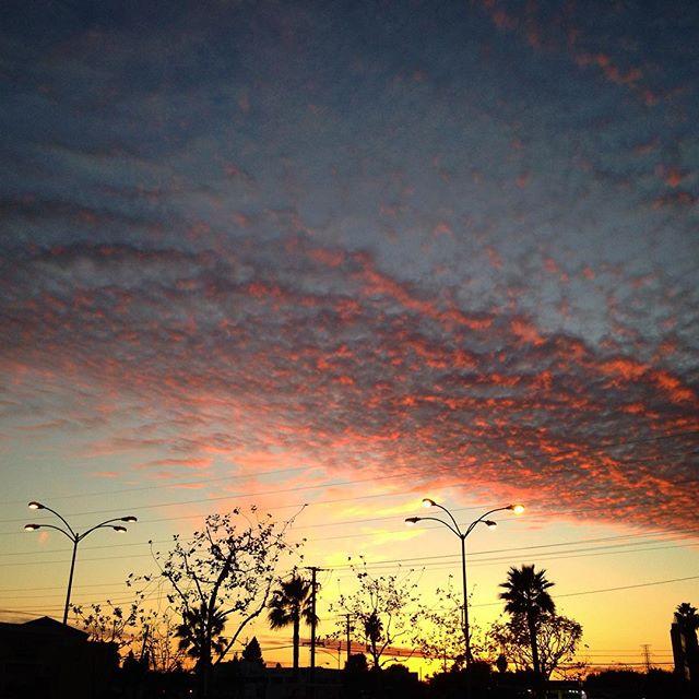 So purdy!! 🌞 #sunsetsaturday
