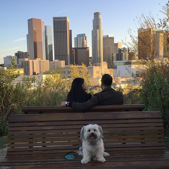 Because that couple would not leave that bench and  so Daisy wanted her own photo... photo