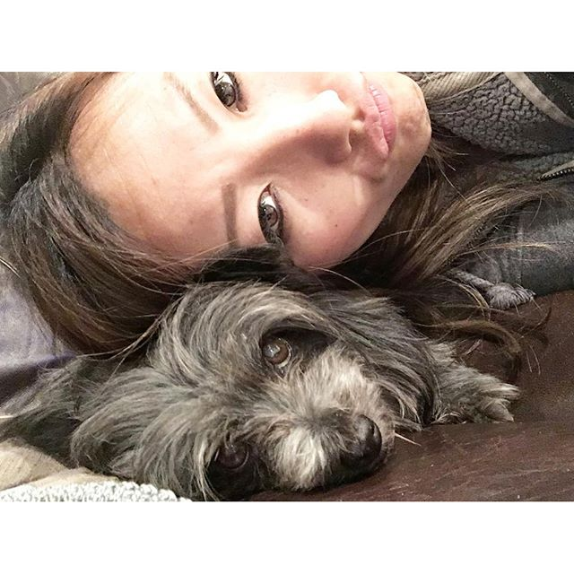 I swear I am not squishing Coco boo! I love these cutie pie! #dogsofinstagram @frizzykat