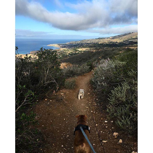 #tgif #hiking