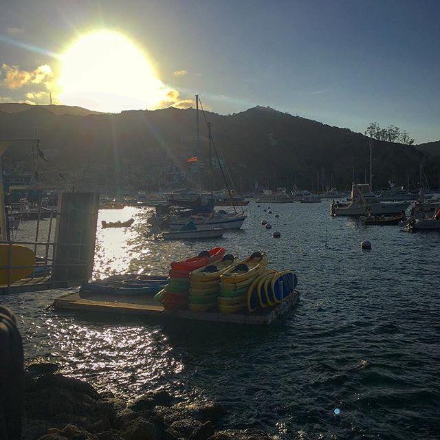 Catalina sunset! 🛥