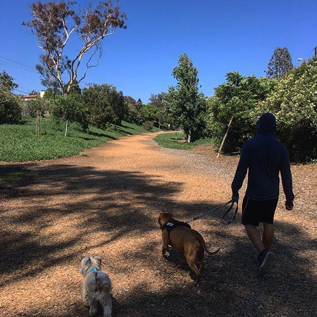 Strolling through MB on a lazy Saturday!!