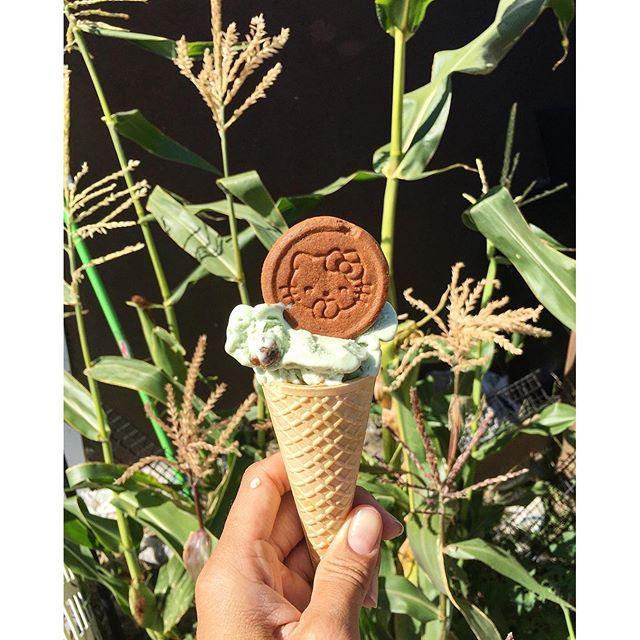 Happy #nationalicecreamday enjoying some gelato with a #hellokitty cookie!! #pandasadventures #yummyinmytummy