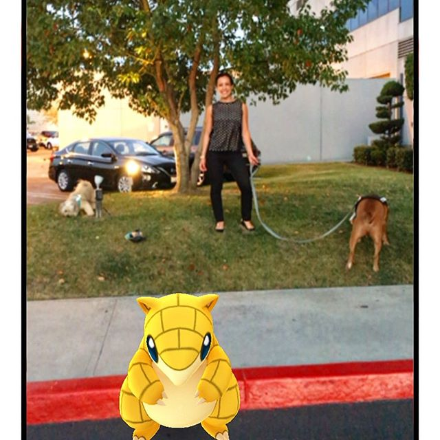 There's a sandslash #pokemongo hanging with us @jinnjuicz ... Good times catching up!! 🏾 #pandasadventures