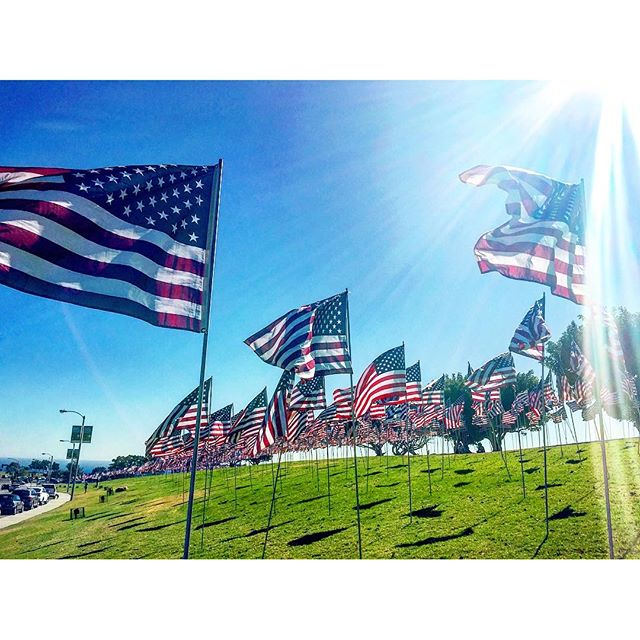 All of these American flags  caught my attention!  #merica