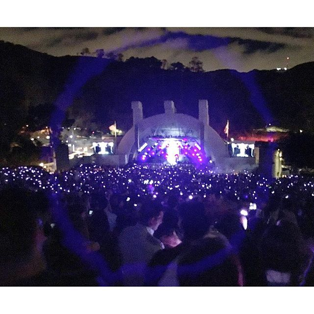 Not sure how this magical purple circle came about but so AWESOME!! #kygo #pandasadventures #hollywoodbowl