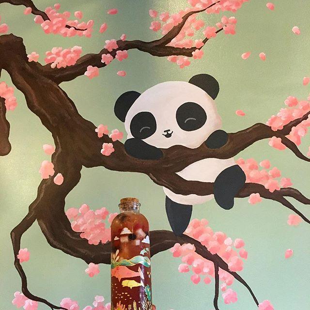 Panda wants to try this drank! 🍼 #pandasadventures
