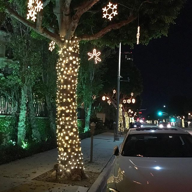 ️//Cheers to a good day today and beautiful holiday lights//️ #optimistic #pandasadventures
