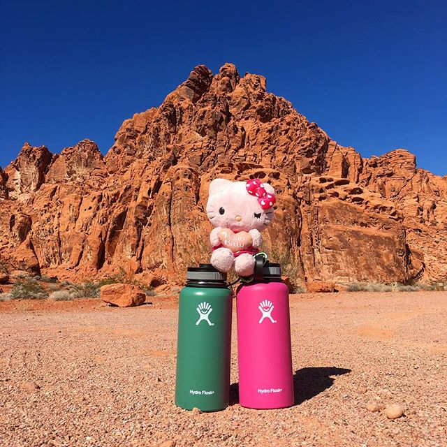 On a scenic tour there will be a hike in here at some point but #hellokitty and the #hydroflasks wanted a photo op! #pandasadventures