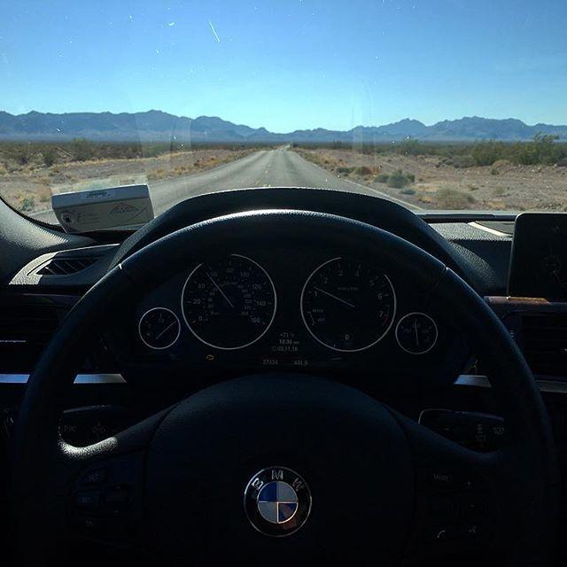 Enjoying the open road ahead! 🚦 #pandasadventures