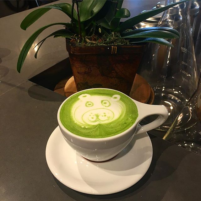 Finally I got my own Panda bear  latte and I only needed to go to our local coffee shop! //Matcha Green Tea #Latte//  #pandasadventures