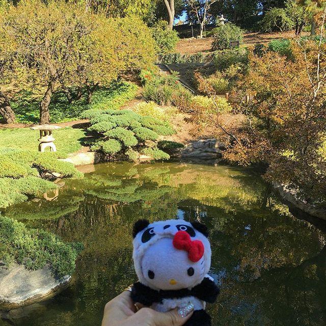 Hello Kitty Panda enjoyed herself, feeling blessed! #pandasadventures