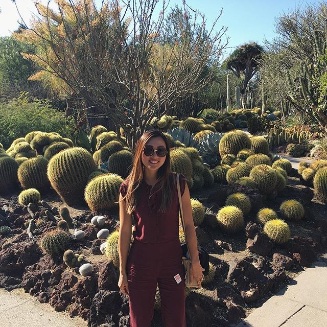Last one with nature.. So many big round ball shaped cactuses! #pandasadventures
