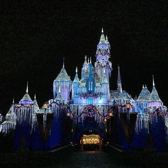 🏽 #pandasadventures #Disneyland