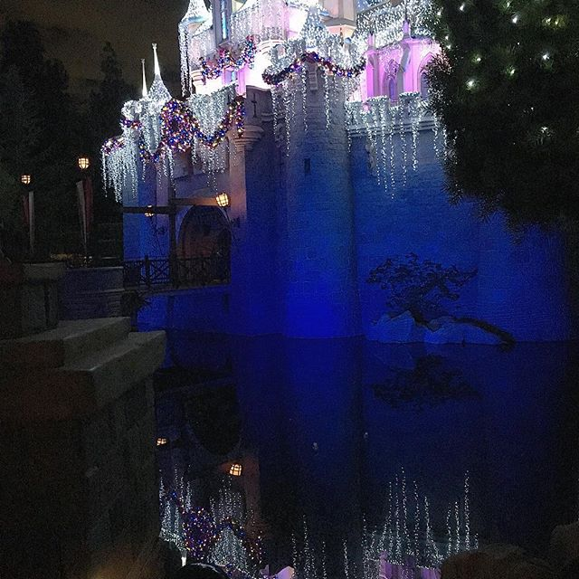 Side view... Of the magical castle!  #Disneyland #pandasadventures