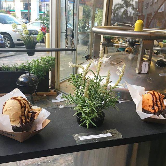Oreo Churro bowls with Thai Tea and Tiramisu Nitrogen ice cream!  Amazing!
