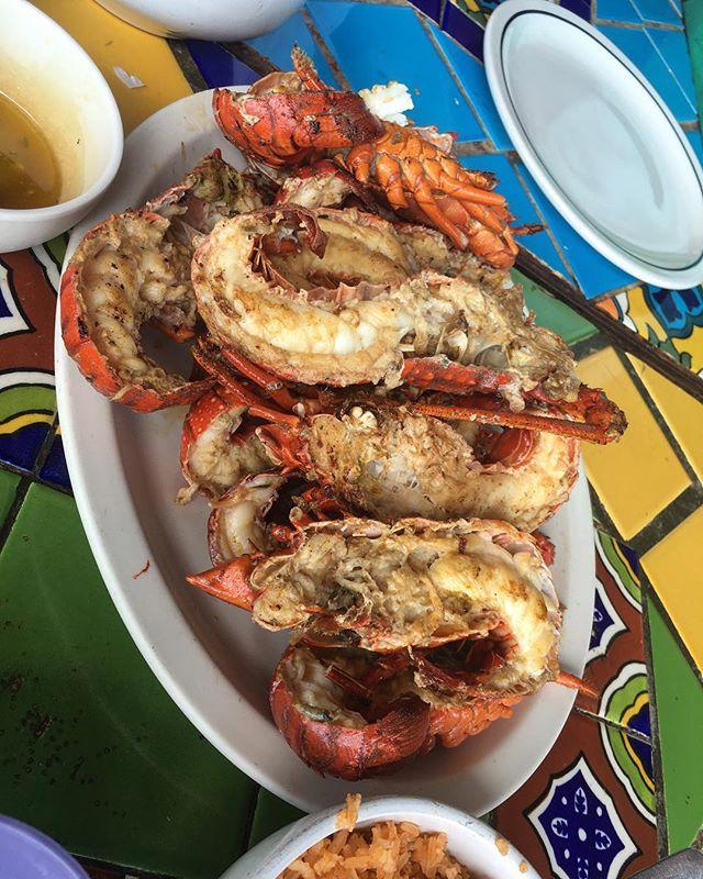 Lobster wasted! 🦂🦂 #foodie #flomanda  #pandasadventures