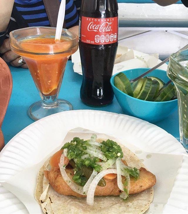 ️ ate a shark taco in Ensenada! #flomanda #pandasadventures