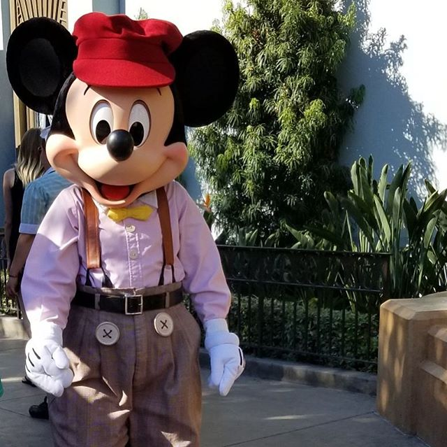 Oh Mickey today was such a hot and busy day at your residence but still happy we got to ride Indiana. Can you get a huge shipping of the rose gold headbands and allow us peasants the chance to purchase a pair? #disneyland #pandasadventures