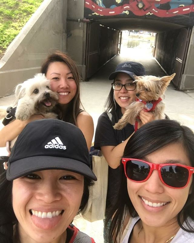 Glad we made it to the last Ciclavia of 2017! 😀 It was so much fun, we spent 4 hours cruising and checking things out. Oh, Elle and Daisy finally meet. @joliney @helloxtine @caffykat S/O to our new friend @veextran , hiii!